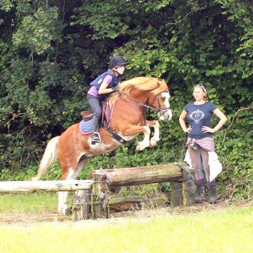 Jewels Stables - Horse and Rider Training